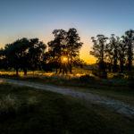 good morning Uruguay